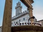 Vino Nobile di Montepulciano: 50 anni fa la prima DOC d'italia