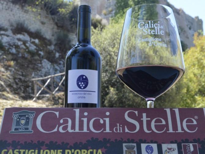 Calici di Stelle a Castiglione d'Orcia dove le forme dell'arte si uniscono al vino Orcia e si premia l'etichetta più bella