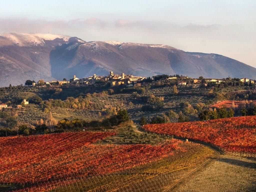 montefalco-panorama