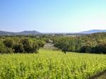 associazione-vini-toscana