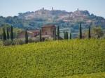 vino-nobile-di-montepulciano-6